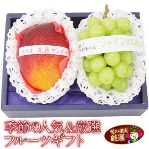 ぶどう 果物 くだもの 父の日 お中元【季節の人気&厳選フルーツギフト (シャインマスカット 完熟マンゴー 2L〜3Lサイズ)】|aino-kajitu
