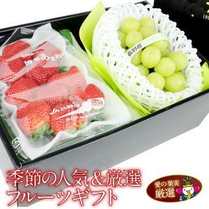 苺 イチゴ ぶどう くだもの 果物 父の日 【送料無料】【季節の人気&厳選フルーツギフト あまおう いちご シャインマスカット】|aino-kajitu