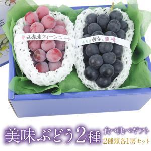 【国産 美味 ぶどう 2種 食べ比べ ギフトセット (クイーンニーナまたはゴルビーまたは紫苑と種なし巨峰)】ぶどう フルーツ くだもの 果物|aino-kajitu