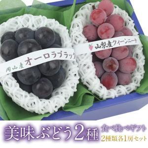 ぶどう フルーツ くだもの 果物【国産 美味 ぶどう 2種 食べ比べ ギフトセット(クイーンニーナ ゴルビー オーロラブラック ピオーネ)】|aino-kajitu