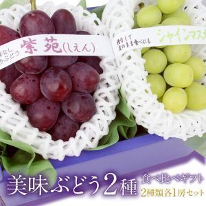 【送料無料】【大房】 【国産 美味 ぶどう 2種 食べ比べ ギフトセット (シャインマスカット 岡山産 長野産 紫苑 岡山産)】ぶどう フルーツ くだもの 果物|aino-kajitu