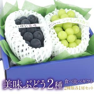ぶどう フルーツ くだもの 果物【国産 美味 ぶどう 2種 食べ比べ ギフトセット(シャインマスカット 種なし巨峰)】|aino-kajitu
