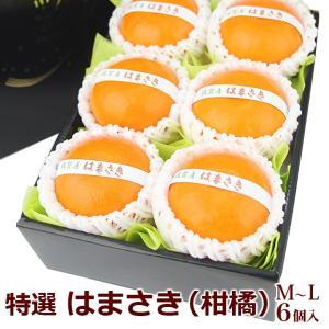 みかん 柑橘 蜜柑 フルーツ 果物 くだもの 桃の節句 ひなまつり ホワイトデー【はまさき(佐賀産)M〜Lサイズ 6個入】|aino-kajitu