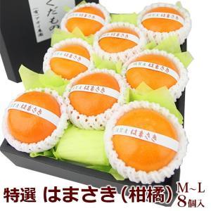みかん 柑橘 蜜柑 フルーツ 果物 くだもの 桃の節句 ひなまつり ホワイトデー【はまさき(佐賀産)M〜Lサイズ 8個入】|aino-kajitu