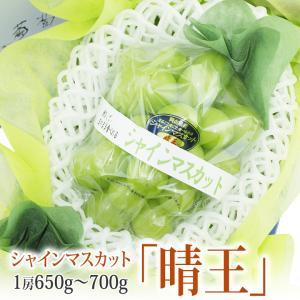 【晴王 (はれおう) シャインマスカット】1房 650〜750g (岡山産) 高糖度 ぶどう フルーツ くだもの 果物 敬老の日 お彼岸 残暑見舞い|aino-kajitu
