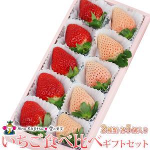 いちご フルーツ くだもの 果物【いちご 食べ比べ ギフト セット(2種類各5個入) 10個入り あまおう苺 ゆめのか 白いちご (淡雪あわゆき)】|aino-kajitu