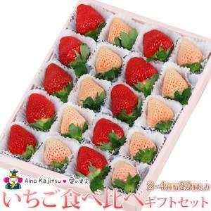 いちご フルーツ くだもの 果物【いちご 食べ比べ ギフト セット(2〜3種類)20個入 あまおう苺 ゆめのか 白いちご (淡雪あわゆき)】|aino-kajitu