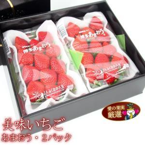 イチゴ 苺 果物 くだもの フルーツ 端午の節句【人気&厳選 いちご ギフトF福岡産 あまおう 2パック】|aino-kajitu