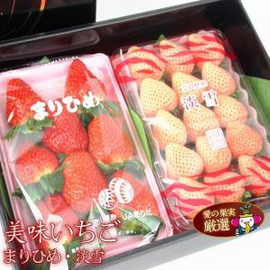 イチゴ 苺 果物 くだもの フルーツ 端午の節句【人気&厳選2種食べ比べいちごギフトEまりひめ 和歌山産 白いちご(淡雪あわゆき) 】|aino-kajitu