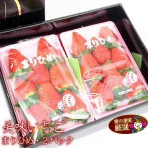 イチゴ 苺 果物 くだもの フルーツ 端午の節句【人気&厳選 いちご ギフト D 和歌山産 まりひめ 2パック】|aino-kajitu