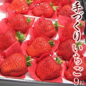 イチゴ 果物 くだもの フルーツ 端午の節句【高級 枝付き 手づくり いちご (品種:さちのか)9個入】 aino-kajitu
