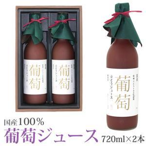 ぶどう 葡萄 国産 巨峰 フルーツ くだもの 果物 お彼岸 敬老の日【果汁100% 巨峰 葡萄ジュース2本セット 720ml×2本】|aino-kajitu