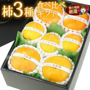 【国産 美味 柿 3種 食べ比べ ギフトセット(3種類セット)(和歌山産・鳥取産など)】柿 かき フルーツ くだもの 果物 ハロウィン お歳暮 お年賀 七五三|aino-kajitu