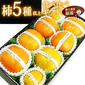 【国産 美味 柿 5〜7種 食べ比べ ギフトセット (和歌山産 鳥取産など)】柿 かき フルーツ くだもの 果物 ハロウィン お歳暮 お年賀 七五三|aino-kajitu