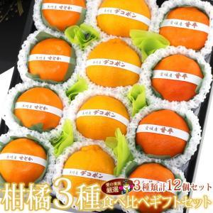 柑橘 みかん フルーツ くだもの 果物【国産 柑橘 3種 食べ比べギフトセット(12個入) 】|aino-kajitu