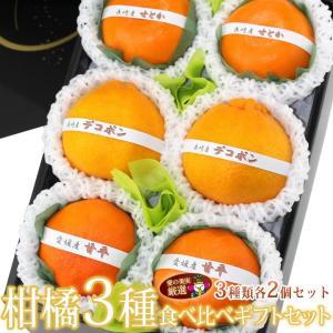 柑橘 みかん フルーツ くだもの 果物【国産 柑橘 3種 食べ比べギフトセット(6個入) 】|aino-kajitu