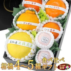 柑橘 みかん フルーツ くだもの 果物【柑橘 4〜5種 食べ比べギフトセット(6〜8個入) 】|aino-kajitu