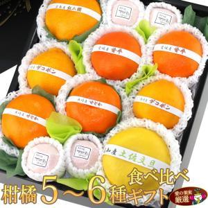 柑橘 みかん フルーツ くだもの 果物【柑橘 5〜6種 食べ比べギフトセット(9〜12個入) 】|aino-kajitu