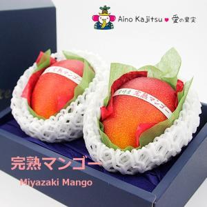 マンゴー フルーツ くだもの 果物 父の日 母の日【送料無料】【宮崎マンゴー(4L 2個入り 糖度13度以上) 】|aino-kajitu