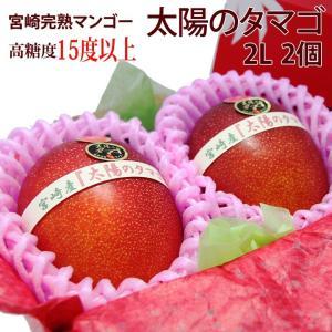 マンゴー フルーツ くだもの 果物 父の日 母の日【送料無料】【宮崎産 完熟マンゴー(太陽のタマゴ)(2L 2個入り 糖度15度以上)】|aino-kajitu