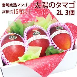 マンゴー フルーツ くだもの 果物 父の日 母の日【送料無料】【宮崎産 完熟マンゴー(太陽のタマゴ)(2L 3個入り)(糖度15度以上)】|aino-kajitu