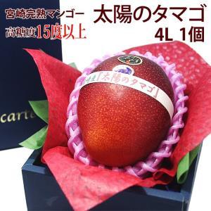 マンゴー フルーツ くだもの 果物 父の日 母の日【送料無料】宮崎産 完熟マンゴー(太陽のタマゴ)(4L 1個入り 糖度15度以上)】|aino-kajitu