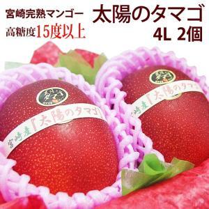 マンゴー フルーツ くだもの 果物 父の日 母の日【送料無料】【宮崎産 完熟マンゴー(太陽のタマゴ)(4L 2個入り 糖度15度以上)】|aino-kajitu