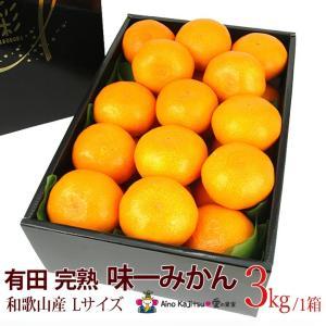 【有田 完熟「味一 みかん」(和歌山産)Lサイズ 3kg】ミカン 蜜柑 柑橘 フルーツ 果物 くだもの ハロウィン お歳暮 お年賀 七五三 aino-kajitu