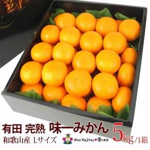 【有田 完熟「味一 みかん」(和歌山産)Lサイズ 5kg】ミカン 蜜柑 柑橘 フルーツ 果物 くだもの ハロウィン お歳暮 お年賀 七五三 aino-kajitu