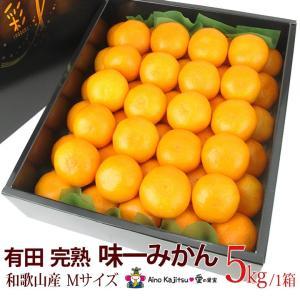 【有田 完熟「味一 みかん」(和歌山産)Mサイズ 5kg】ミカン 蜜柑 柑橘 フルーツ 果物 くだもの ハロウィン お歳暮 お年賀 七五三 aino-kajitu
