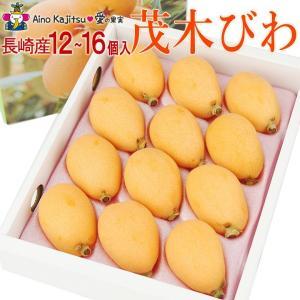 枇杷 フルーツ 果物 くだもの 桃の節句 ひなまつり ホワイトデー【茂木びわ(長崎産)12〜16個 】|aino-kajitu
