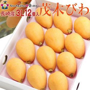 枇杷 フルーツ 果物 くだもの 桃の節句 ひなまつり ホワイトデー【茂木びわ(長崎産) 3L 12個 】|aino-kajitu