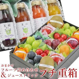 フルーツ くだもの 果物 暑中見舞い お中元 お盆 父の日 【プチ重箱】 KPJ-3(プチフルーツ15個・果汁野菜汁ジュースドリンク4本)|aino-kajitu