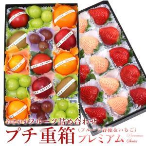 イチゴ 苺 フルーツ くだもの 果物 【プチ重箱プレミアム】 FPJ-5(プチフルーツ15個・いちご...