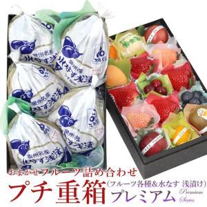 フルーツ くだもの 果物 暑中見舞い お中元 お盆 父の日 【プチ重箱】 KPJ-5(プチフルーツ15個・水なす 浅漬け・5個)|aino-kajitu