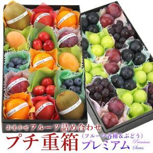 フルーツ くだもの 果物 七五三 【プチ重箱プレミアム】 FPJ-1(プチフルーツ15個・プチぶどう4種・15個)|aino-kajitu