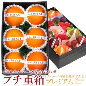 フルーツ くだもの 果物 暑中見舞い お中元 お盆 父の日 【プチ重箱プレミアム】 FPJ-3(プチフルーツ15個・紅まどんな・6個)|aino-kajitu