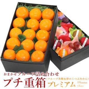 フルーツ くだもの 果物 暑中見舞い お中元 お盆 父の日 【プチ重箱プレミアム】 FPJ-4(プチフルーツ15個・夢のこつぶみかん30個 約1.7kg)|aino-kajitu