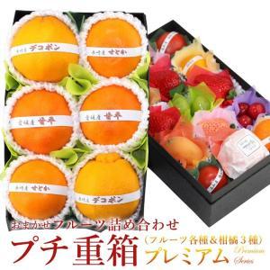 フルーツ くだもの 果物 桃の節句 ひなまつり ホワイトデー 【プチ重箱プレミアム】 FPJ-7(プチフルーツ15個 旬の柑橘3種計6個入り)|aino-kajitu