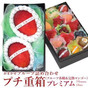 フルーツ くだもの 果物【送料無料】【プチ重箱プレミアム】 FPJ-9(プチフルーツ15個・宮崎産 完熟マンゴー2L〜3L・2個)|aino-kajitu