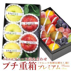 【プチ重箱プレミアム】 FPJ-11(プチフルーツ15個 旬のりんご2種 計5個入り)リンゴ 林檎 くだもの 果物 敬老の日 お彼岸|aino-kajitu