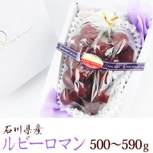 【送料無料】【ぶどうの宝石 ルビーロマン (石川産) 500g〜590g】ぶどう 葡萄 フルーツ くだもの 果物 敬老の日 お彼岸 残暑見舞い|aino-kajitu
