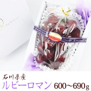 【送料無料】【ぶどうの宝石 ルビーロマン (石川産) 600g〜690g】ぶどう 葡萄 フルーツ くだもの 果物 敬老の日 お彼岸 残暑見舞い|aino-kajitu