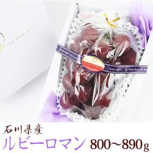 【送料無料】【ぶどうの宝石 ルビーロマン (石川産) 800g〜890g】ぶどう 葡萄 フルーツ くだもの 果物 敬老の日 お彼岸 残暑見舞い|aino-kajitu