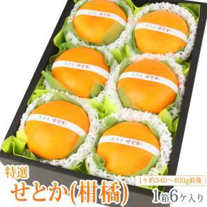 みかん 蜜柑 柑橘 フルーツ くだもの 果物 桃の節句 ひなまつり ホワイトデー【せとか(長崎産 佐賀産)中玉 6個入】|aino-kajitu