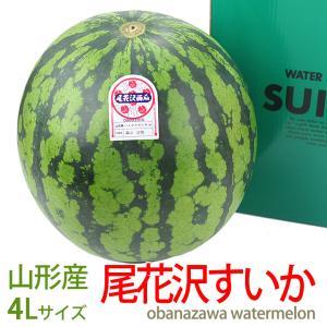 すいか スイカ 西瓜 フルーツ くだもの 果物 暑中見舞い お中元【尾花沢 すいか(山形産)2L】
