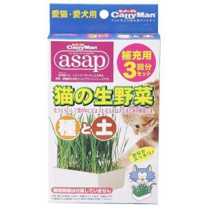 キャティーマン 猫の生野菜種と土 ドギーマン|ainstock