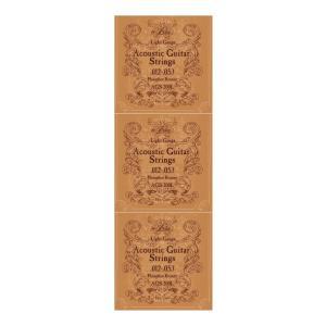 【弦×3セット】ARIA AGS-200L×3セット アコースティックギター弦/ライトゲージ/メール便発送・代金引換不可