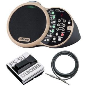 BOSS DR-01S(フットスイッチ/FS-5U+接続ケーブル付) Rhythm Partner リズム・パートナー|aion