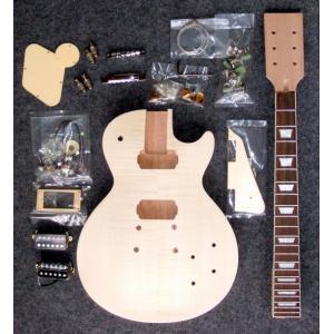 HOSCO ER-KIT-LP-D/I エレキギター/レスポールタイプ デラックス版 組み立てキット ★難易度:高/送料無料|aion